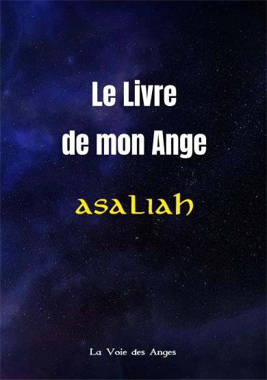 Le Livre de Mon Ange